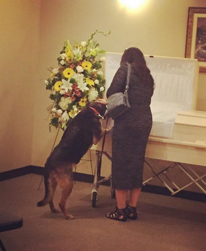 Andy Beaulieu: Dog Looks Into Owners Casket, Wife Makes Revelation