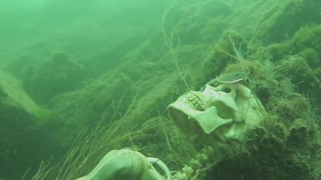 Colorado River skeletons