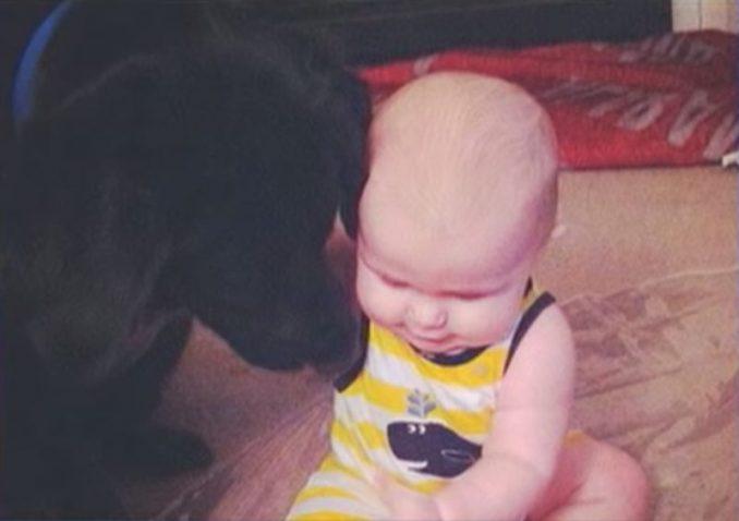 Benjamin Jordan Alexis Khan dog babysitter