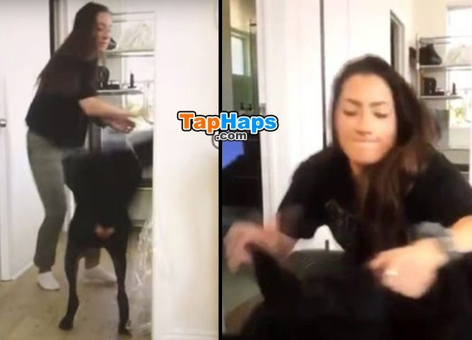 Brooke Houts YouTuber Accidentally Uploads Remarkably Grotesque Video With Dog