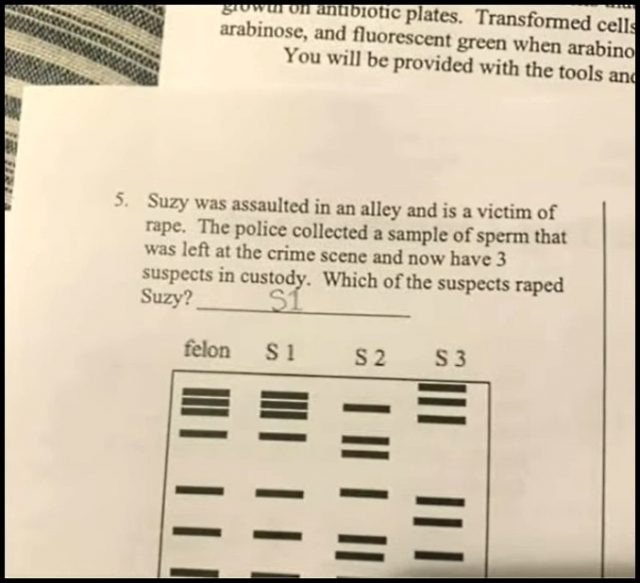 Cookie VonHaven Parents Are Outraged Teacher Assigned Homework With Rape Question
